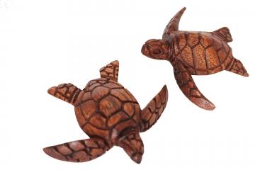 Ziemlich Süsse Meeresschildkröte Färbung Seite Fotos - Beispiel ...